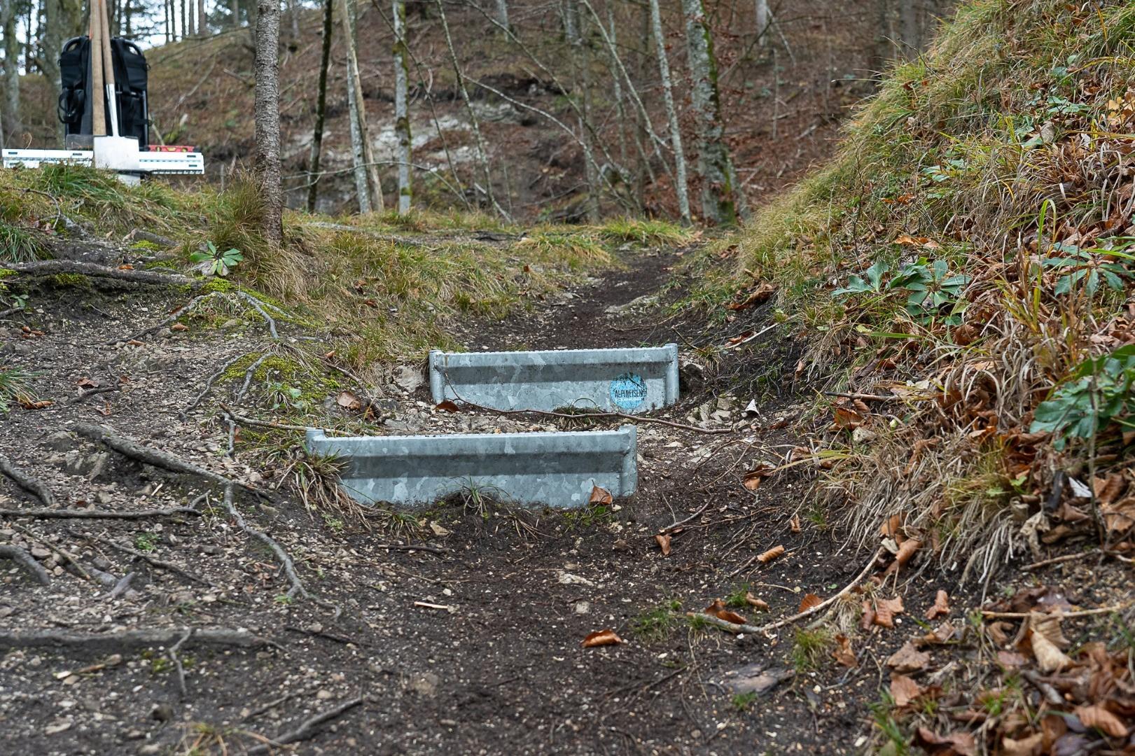 Wanderweg im Wald - Alpineisen Steinbock