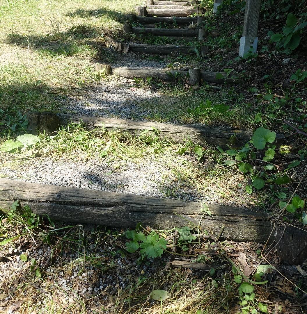 Elztal - alte Holztreppe