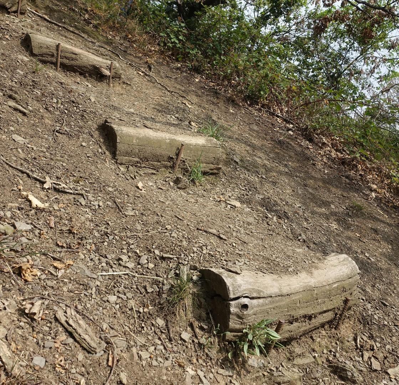 Rheinsteig - alte Stufen aus Holz