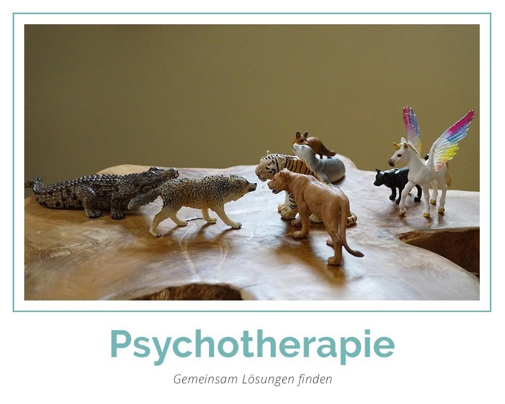Ppsychotherapie Andreas Schauer