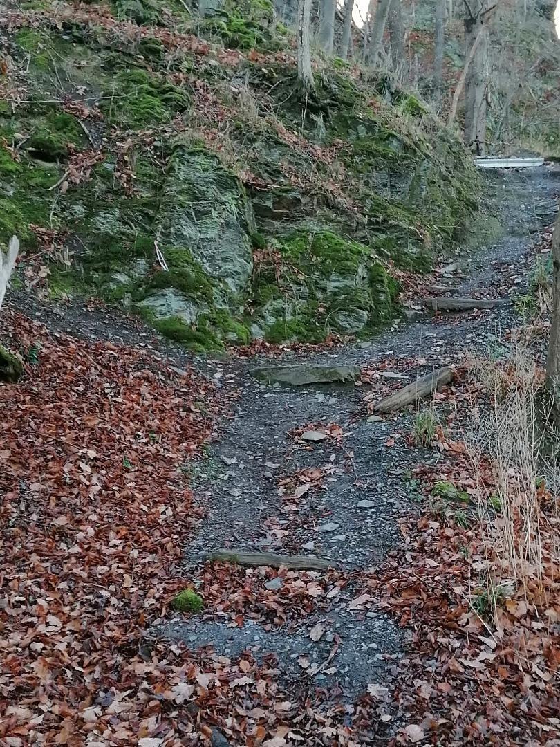 Wilhelmsblick vor der Sanierung durch Alpineisen
