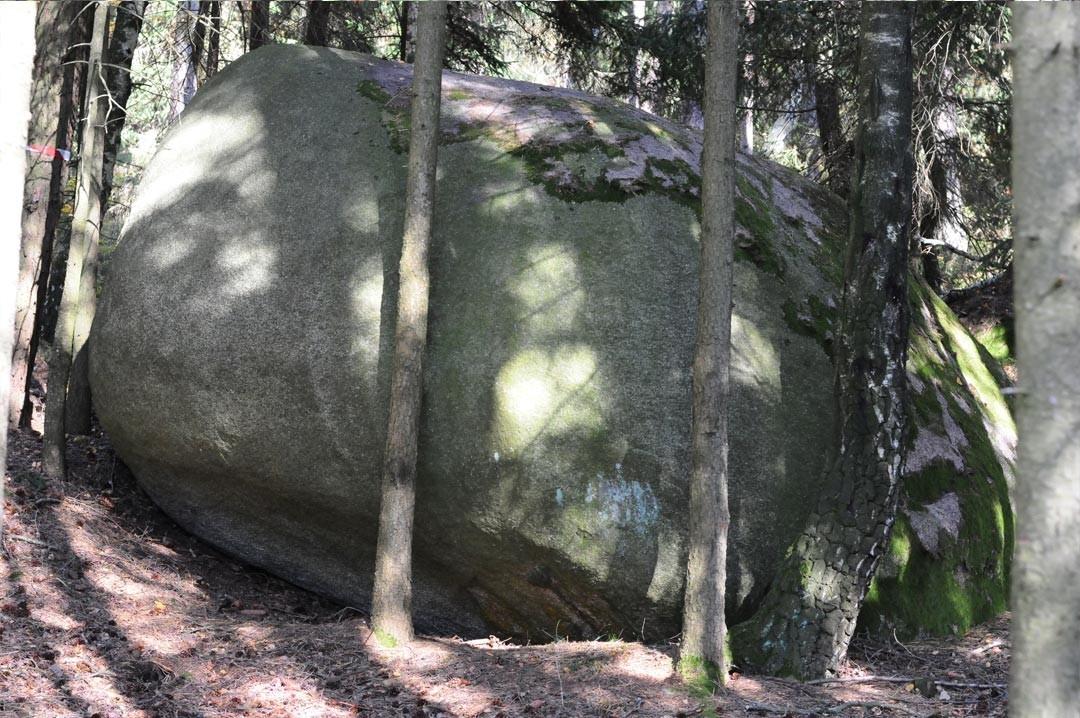 Ausläufer des Schwanzes - Venusstein