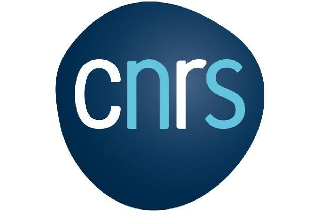 cnrs_smallJPG.jpg