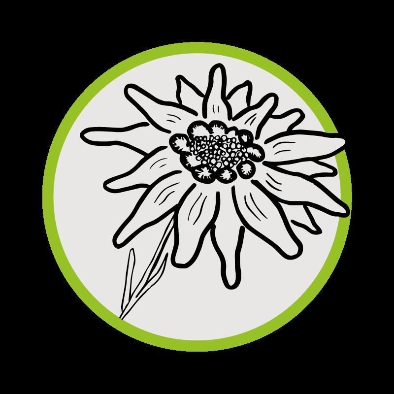 Edelweiss Handlauf