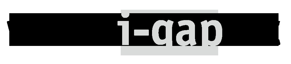 Logo i-gap Schwingenschlögl & Welser OG